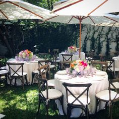 Beautiful Sunday brunch today! #JacksonDurham #BackYardBrunch #floral #flowers