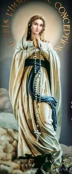 I am the Immaculate Conception Divine Mother, Blessed Mother Mary, Blessed Virgin Mary, Mother Mary Images, Images Of Mary, Catholic Pictures, Pictures Of Jesus Christ, Madonna, Immaculée Conception