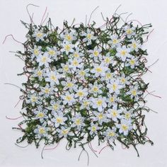 Textile Artist Anne Honeyman Itll Soon Be Spring Again Anne Honeyman Interview: Fragility, fluidity structure History Of Textile, Wood Anemone, Water Soluble Fabric, Creative Textiles, Textiles Techniques, Contemporary Embroidery, Thread Painting, Book Quilt, Free Machine Embroidery