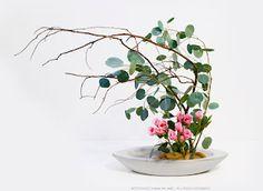 ♥ Elegant Ikebana