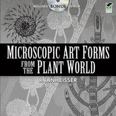 This extraordinary collection will magnify artistic sensibilities with 400 detailed illustrations of nature's minute but magnificent handiwork. The accompanying CD-ROM includes all of the images in the book.