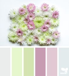 { flora tones } - https://www.design-seeds.com/in-nature/flora/flora-tones-6