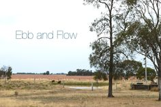 Ebb and Flow | blog post by Homelea Lass