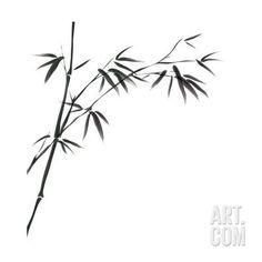 Art Print: Chinese Painting Of Bamboo by bluesee : Bamboo Drawing, Bamboo Art, Bamboo Garden, Floral Back Tattoos, Small Tattoos, Ave Tattoo, Silkscreen, Bamboo Tattoo, Bamboo Design
