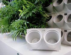 Bunky pre živé steny Pixel Garden #verticalgarden #garden #vertikalnazahrada #greenwall #zelenastena #interierovydesign #design #flowerpot #pot #kvetinac #zivastena #alvex Planter Pots, Gardening, Tableware, Design, Dinnerware, Lawn And Garden, Tablewares, Dishes