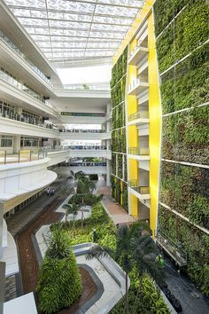 Institute of Technical Education, Singapore. Landscape Architecture by Grant Associates.