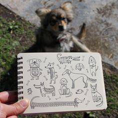Day 32 of #The100DayProject Dog. #100DaysOfDrawingThingsInDifferentVariations #yuliiabahniuk #illustration #doodle #doodling #ethnic #tribal #ornament #drawing #dog