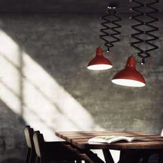 Wild dining room thi