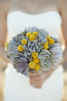succulent billy ball bridal bouquet - Google Search