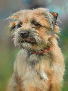 """""""Ruffin"""" (2014) By Peter Barker, from Banbury, Oxfordrshire, England (current location, South Luffenham, England) - pastel on Clairefontaine Pastelmat; 12 x 9 in - http://www.peterbarkerpaintings.co.uk/"""