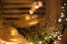 Christmas lights and sparkling mushrooms ... Photographed by Cheryl Angear Photography