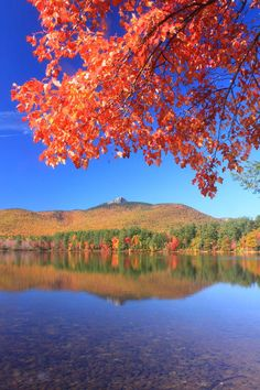 ✯ Chocorua Lake Foliage - New Hampshire The mountain I get to look at from my back deck:)