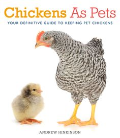 Cole's Bookstore and Fringford Feeds are egg-cited to announce that Andrew Hinkinson and his pet Serama chickens - the smallest breed in the world - will be in store to answer your questions about ...