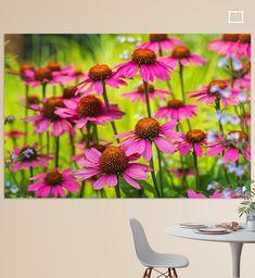 Een veldje roze zonnehoedjes steekt fel af tegen de groene achtergrond. Mooi in een lijst of om een hele muur mee te bedekken.