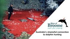 68,795 signatures are still needed! Ron Johnston, Broome, Australia Must Stop Taiji, Japan Slaughtering Dolphins