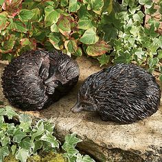 £34.50 Charming hedgehog garden sculptures inspired by 'A Hedgehog in a Landscape' by Giovanna Garzoni (1600-1670).
