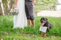 """Incorporate your pets with a """"My humans are getting married!"""" sign."""