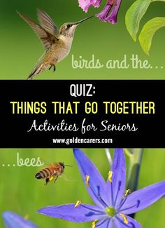 Things that Go Together Quiz #3: Another brain food to alert the mind. How many can they remember? A fun reminiscing quiz for seniors, suitable for people living with dementia.
