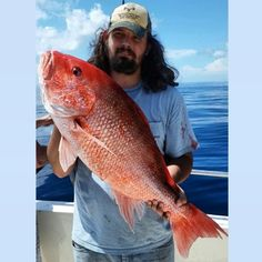 red snapper Where did you catch it? alantic ocean What did you catch it with? a live grunt that i caught it the next drop after catching a moray eel