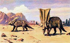 "Chasmosaurus Illustration by Zdenek Burian, 1976 ""Life Before Man,"" 1995"