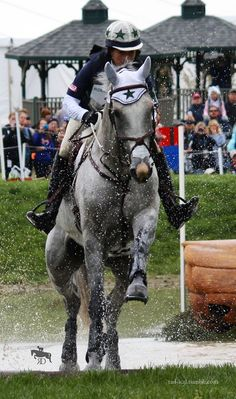 cross country jumping! three day eventing equestrian english love •.♡.•