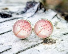 Pusteblumen Ohrstecker in zartem rosa / dandelion studs in light pink made by Perlerei-Liebevoll via DaWanda.com