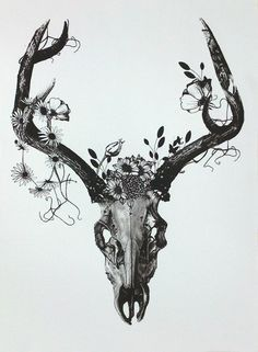 deer skull + antlers. meaning: Regrowth, rebirth, protection, strength, balance, cycle