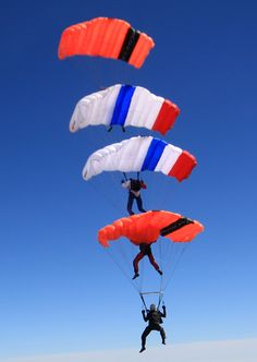 11 Best Disciplines images in 2012 | Skydiving, Parachute