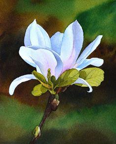 Magnolia, aquarelle originale, peinture florale, fleur blanche, magnolia blanc, esperoart.