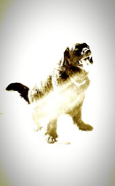 Daisy Duke in full winter form.
