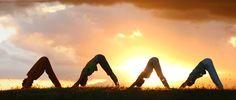 #yoga #hatha #dog #pose yoga inspiration