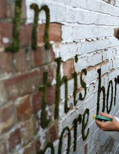 Moss graffiti tutorial.