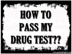 The popularity of drug testing is rising all over the world. Click this site http://passmydrugtest.com/ for more information on how to pass my drug test.  As more and more efforts for random drug tests arise, so are the people who are looking for ways to pass a drug test. There are many people who are wondering on how to pass my drug test easily. Follow us http://howtopassa-drugtest.blogspot.com/2015/09/pass-drug-test.html