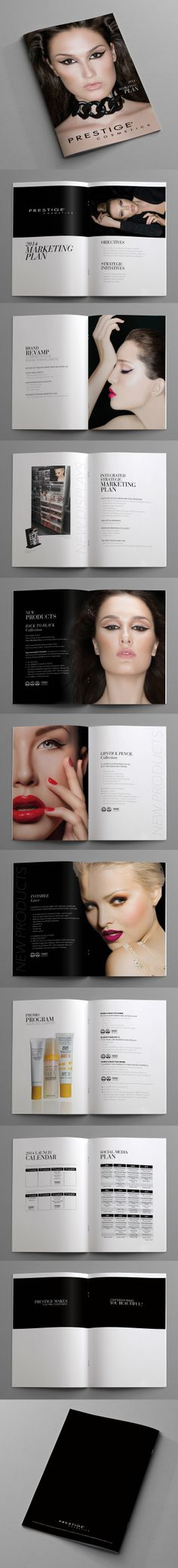 Marketing Plan (Magazine) / Prestige Cosmetics