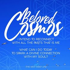 I intend to reconnect with all the parts that is me. What can I do today to spark a divine connection with my soul? What Can I Do, I Can, Cosmos, Affirmations, Insight, Connection, Universe, Neon Signs, Motivation