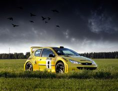 Peugeot 206 WRC, I like this Hatchback