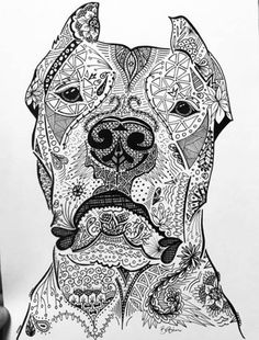 Skull Coloring Pages, Adult Coloring Book Pages, Printable Adult Coloring Pages, Coloring Books, Pictures To Draw, Dog Argentino, Zentangle Drawings, Illustrations, Photos Du