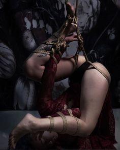 kissmedeadlydoll // shibari suspension burgundy lace & natural rope