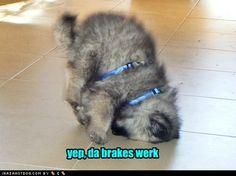 Yep, the brakes work!