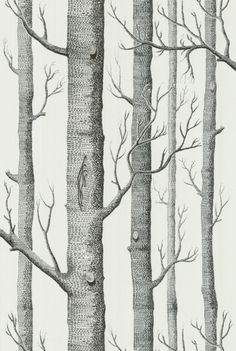 Cole & Son wallpaper, forest (woods)