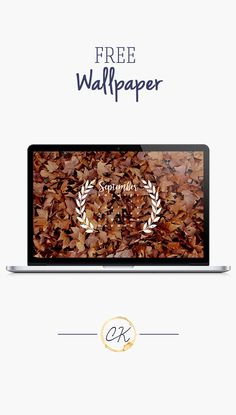 Fall leaf September calendar 2016 wallpaper you can download for free on the blog! For any device; mobile, desktop, iphone, android!