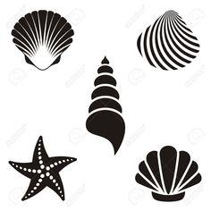 conchas blanco y negro dibujo - Buscar con Google