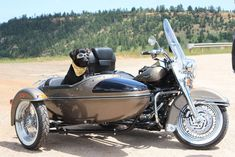 1000+ images about dogs + motorcycle sidecars on Pinterest | Sheep dogs, Search and German shepherds