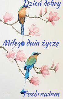 Rooster, Watercolor, Bird, Facebook, Fotografia, Pen And Wash, Watercolor Painting, Birds, Watercolour