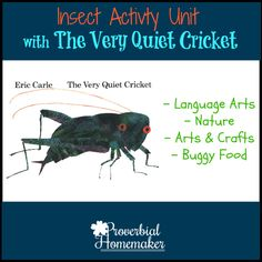 The Very Quiet Cricket Insect-Inspired Unit Activities