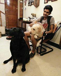 Champ and Zara #labradors #petdogs