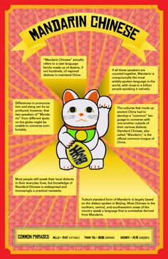 Get facts about Mandarin Chinese language easily with our infographic showing Chinese words like Hello, Thank you and good bye. How To Speak Chinese, Chinese Words, Learn Cantonese, Learn Chinese Characters, Mandarin Language, Learn Mandarin, World Languages, Chinese Language, Chinese Culture