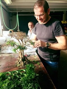 Busy preparing for our show tank at the Brancheorganisatie Dibevo tradeshow this weekend – avec Filipe Oliveira, à Aquaflora. #FilipeOliveira #Aquascaping ...... Pin by Aqua Poolkoh