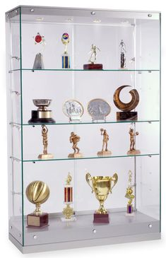 48 x 76 x 19-Inch, Tempered Glass Frameless Design Award Case, Silver Finish Canopy And Base