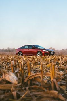 The weather may be changing, but the way the Accord commands the road with Honda Sensing® stays the same. Soichiro Honda, Accord Sport, Honda Motors, Kelley Blue, Fifth Generation, Honda Cars, Car Buyer, Automobile Industry, Environmental Issues